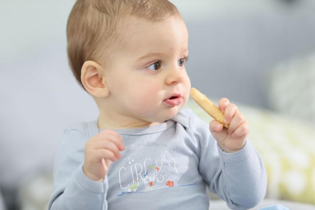 Actividades Para Bebés De 11 Meses