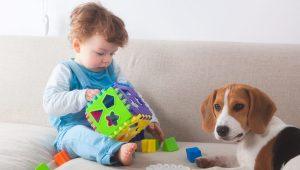 El perro ideal para los niños