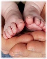 pies bebe