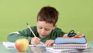 consejos prácticos para la alimentación escolar