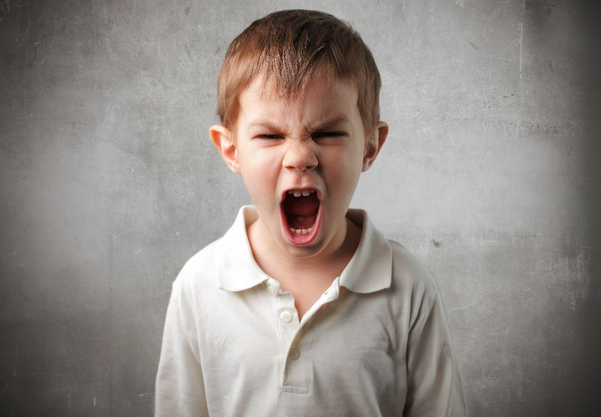 Agresividad en los niños: ¿Los padres intervenir en las peleas?