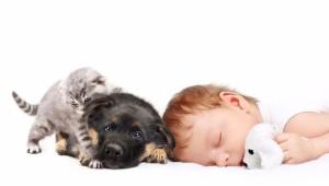 Perro sorprende a dueña cuidando a su bebé