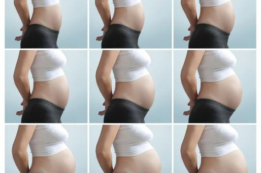 Crecimiento de la barriga durante el embarazo