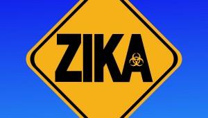 Medidas para combatir el Zika