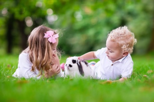 niños en el pasto