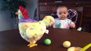 Así reacciona esta bebé al ver una gallina poner