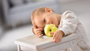razones por las que el niño pierde el apetito