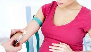 ¿Qué pasa si donamos sangre estando embarazadas?