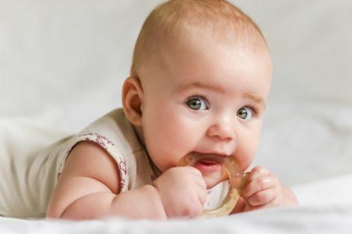bebe mordedor primeros dientes